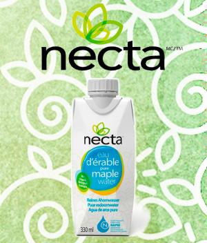 necta-300